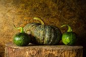Still Life Pumpkin
