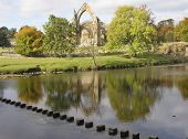 Bolton Abbey And Stepping Stones