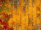 Grunge autumn background with fall leaves
