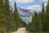 Trail Leading To A Mountain Lake - Alberta, Canada