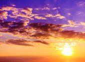 Rising Scene Dawn