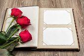 photo album and roses on wood background
