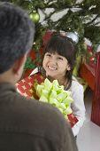 Hispanic girl giving Christmas gift to father