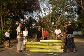 SEPTEMBER 18, 2014 - BALI, INDONESIA: Villagers make a coffin using banana tree trunks for a cremation ceremony later that afternoon. Freeing the soul of the dead by cremation is a belief here.