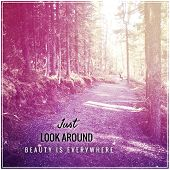 Inspirational Typographic Quote - Just look around beauty is everywhere