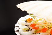 pic of scallop shell  - scallops presented on a scallop shell - JPG