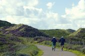 Cycling in Sylt