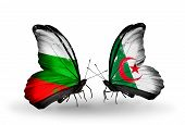 stock photo of algeria  - Two butterflies with flags on wings as symbol of relations Bulgaria and Algeria - JPG