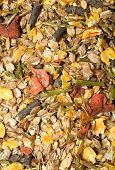 Fruity Natural Sportive  Muesli Background. For Horse. Close Up