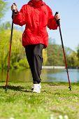 Nordic Walking. Female Legs Hiking In The Park.