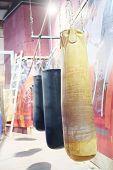Punching bag at gym