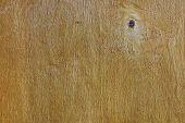 Varnished Plywood
