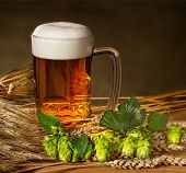Pint Of Beer With Raw Material For Beer Production