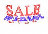 Three-dimensional Inscription Winter Sale