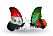 Two Butterflies With Flags On Wings As Symbol Of Relations Syria And Zambia