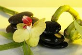 Spa stones with orchid and bamboo on light background