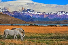 stock photo of nationalism  -  Lake Laguna Azul in the mountains - JPG