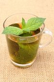 stock photo of mint-green  - Fresh natural green mint in cup of beverage lying on burlap texture mint brewed in cup concept for healthy nutrition - JPG