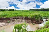 foto of grass area  - Weir in the area of cultivation water erosion through the cultivated area soil degradation - JPG
