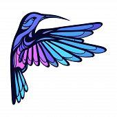 stock photo of colibri  - Flying tropical stylized hummingbird on white background - JPG