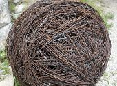 stock photo of kansas  - large ball of barbed wire - JPG