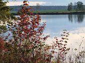 foto of bohemia  - view landscape ponds South Bohemia Czech Republic  - JPG