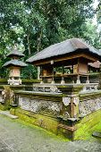 foto of hindu temple  - Hindu temple in the Ubud Monkey Forest Bali Indonesia - JPG