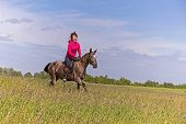 pic of horse girl  - Beautiful redhead girl riding horse in summer day  - JPG