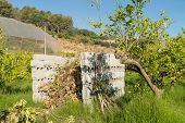 foto of prunes  - Agricultural burner made of concrete blocks and filled with waste from pruning citrus trees - JPG