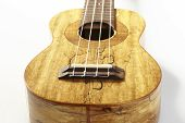 picture of ukulele  - Ukulele hawaiian guitar isolated on white background - JPG