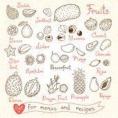 stock photo of garden snake  - Set drawings of fruit for design menus - JPG