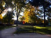 Park Bench Ina  Autumn Park