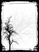 stock photo of winter trees  - Silhouette of a winter tree on a grunge framed background - JPG