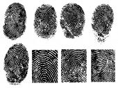 8 Black and White Vector Fingerprints - Very accurately scanned and traced ( Vector is transparent s