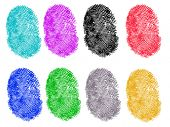 8 Colored Vector Fingerprints - Very accurately scanned and traced ( Vector is transparent so it can