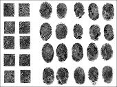 30 Detailed Fingerprints