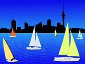 Auckland Skyline With Yachts