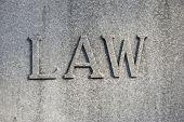 Law_0446