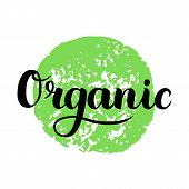 Organic Brush Lettering. Hand Drawn Word Organic With Green Circle. Label, Logo Template For Organic poster