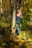 Cute Boy And Autumn Forest