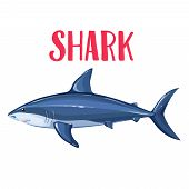 Vector Shark. Cartoon Icon Badge Fish For Design Seafood Product And Market. poster