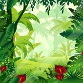 Vector Illustration Of Background Jungle Lawn In Morning Time. Bright Colorful Jungle With Ferns, Tr poster