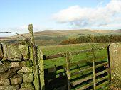 Feld Gate Ansicht Alston