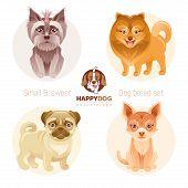 Puppy Dog Breeds Icon Set. Yorkshire Terrier, Pomeranian Spitz, Chihuahua, Pug Breed. Animal Cartoon poster