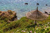 Abandoned Beach. Straw Sun Umbrella In The Wild Rocky Terrain. Overgrown Loach Beach. The Sea Coast  poster