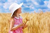 picture of cute little girl  - Lovely preschool girl in wheat field - JPG