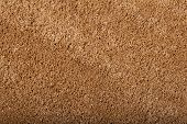 Carpet Covering Background. Pattern And Texture Of Orange Colour Carpet. Copy Space. poster