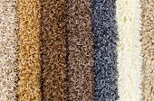 Carpet Demo Samples