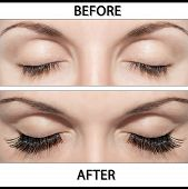 stock photo of eyebrow  - Close Beautiful eyes with natural eyelashes to and false eyelashes after - JPG