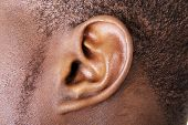 Black male ear close up
